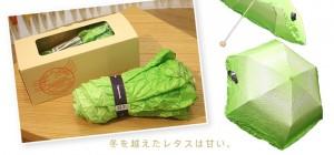 Go-green-with-vegetebrella